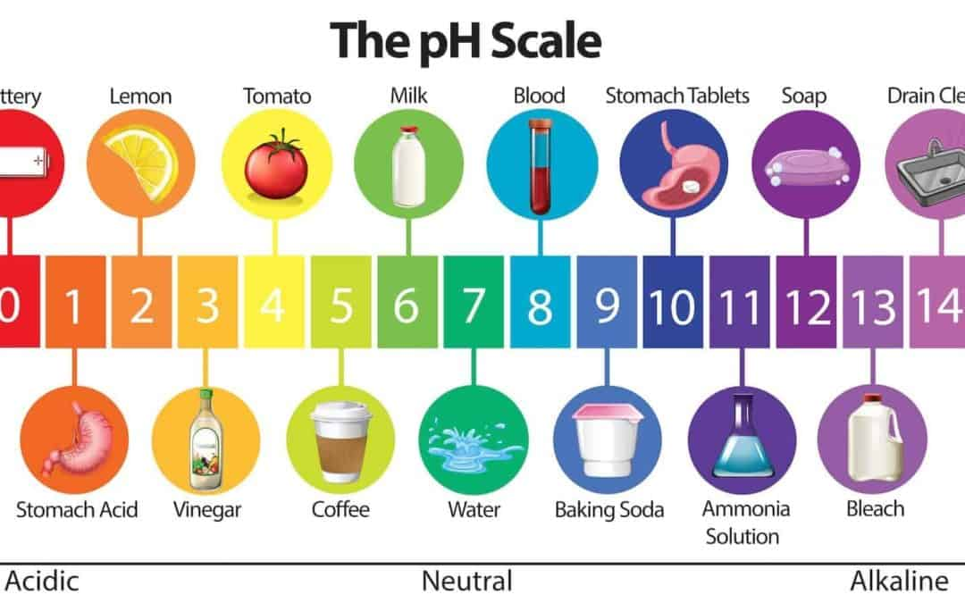 PH – What You need to Know